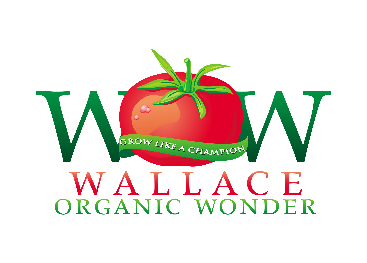 WOW-Logo-with-Banner-ADJUSTED1